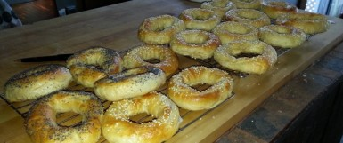 Fresh Baked Bagels